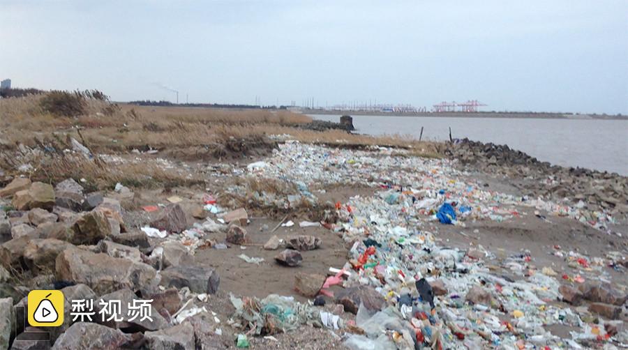 【巨量垃圾同性恋小说母子乱伦密布长江口,威胁上海水源地