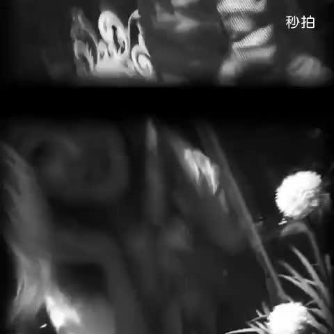 mvp小人物的秒拍视频_秒拍-10秒拍大片