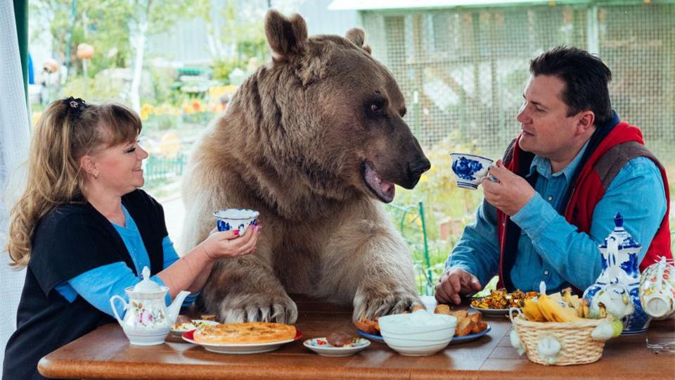 """爷爱怀旧 俄罗斯一对夫妇抚养270斤""""熊孩子""""23年 微博@爷爱怀旧 爷爱怀旧"""