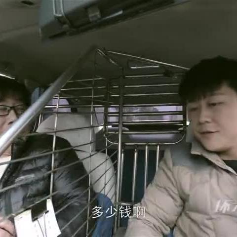 【搞笑】 智商负一万分 乘客你智商这么低,你爸妈知道吗?--《坏才刘科学》